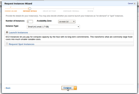 AWS Request Instances Wizard: choose type